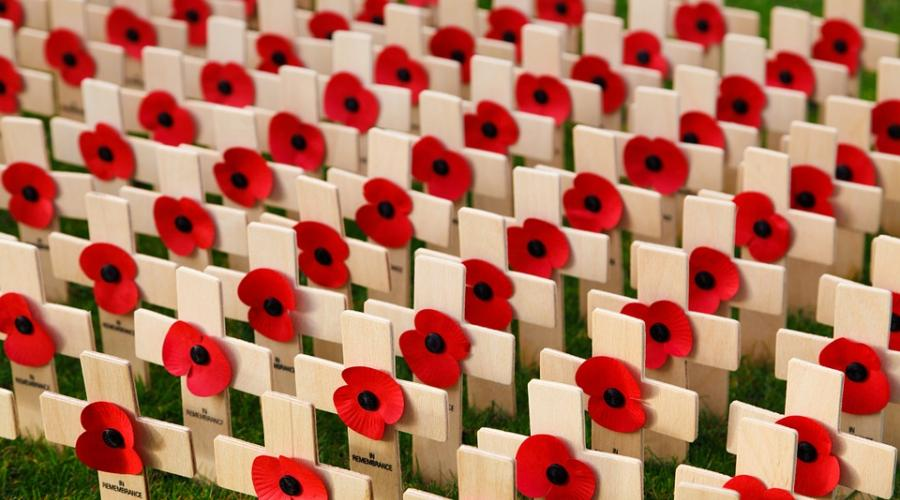 Photo of poppies on crosses