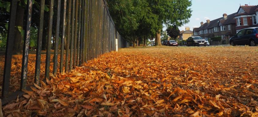 Barnet Council has formed a specialist leaf-sweeping squad